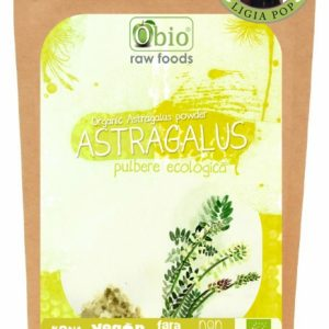 ASTRAGALUS PULBERE RAW BIO 125G