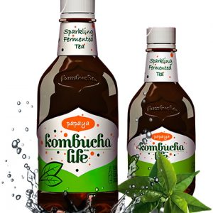 KOMBUCHA LIFE CU PAPAYA 500ML