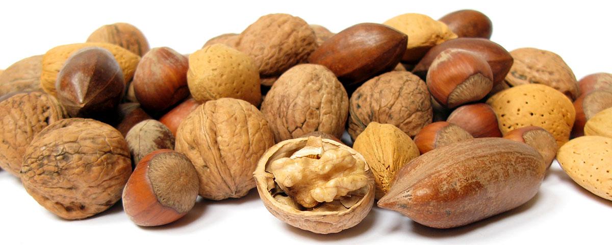 Omega 3 nuci si seminte